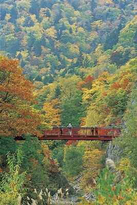 定山渓(定山渓温泉)の紅葉
