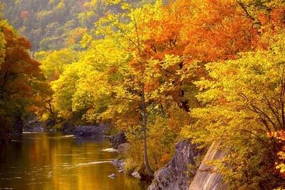 【写真を見る】紅葉のアーチ越しに望む、滝上渓谷・錦仙峡の紅葉