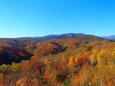 尾根にある塔から360度のパノラマが広がる国営滝野すずらん丘陵公園の紅葉