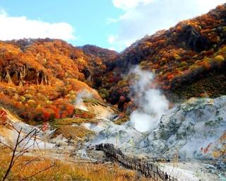 写真に撮りたい!北海道のおすすめ紅葉スポット10選