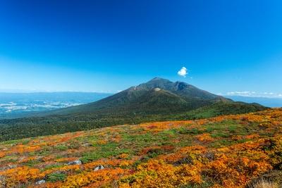 【写真を見る】岩手県内でもっとも早く紅葉を楽しめる三ツ石山の紅葉