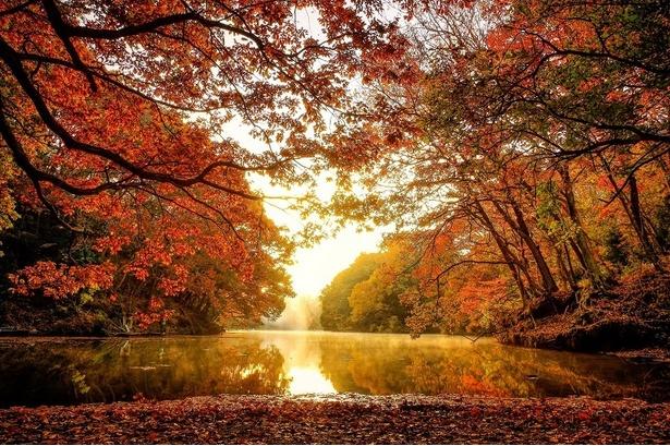 美しい自然湖と呼ばれる震生湖