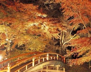 写真に撮りたい!関東のおすすめ紅葉スポット10選