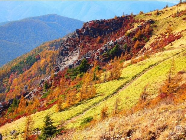 広大な高原を飾る秋の美ヶ原高原