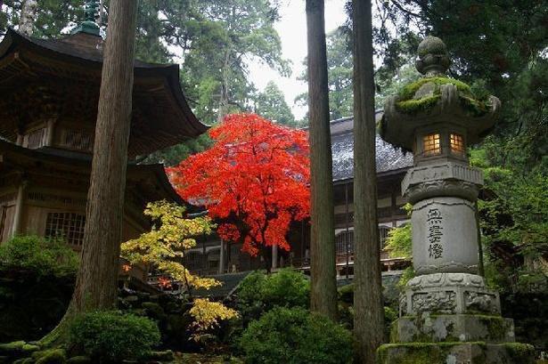 画像提供:大本山永平寺