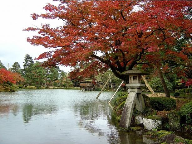 画像提供:石川県金沢城・兼六園管理事務所