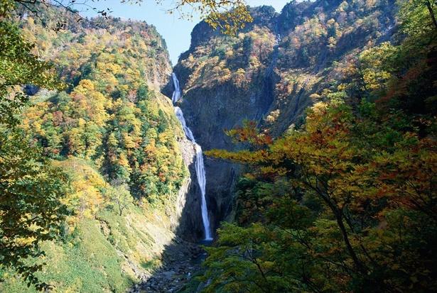 立山(称名滝:標高1,000m付近)