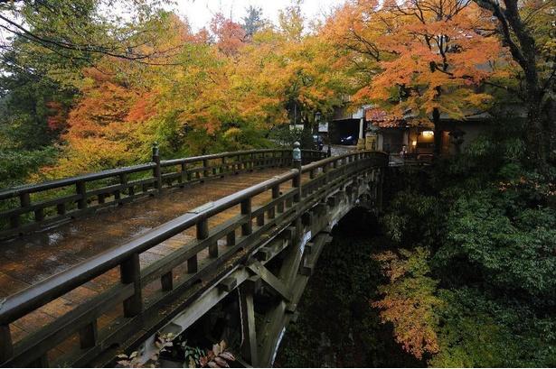 画像提供:山中温泉観光協会