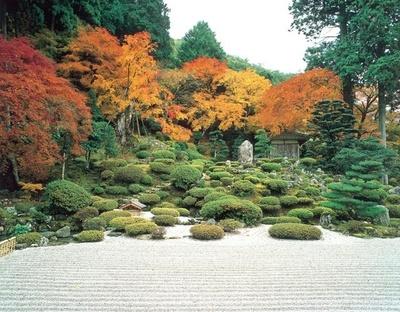 紅葉と枯山水庭園が生む美しい萬徳寺の紅葉