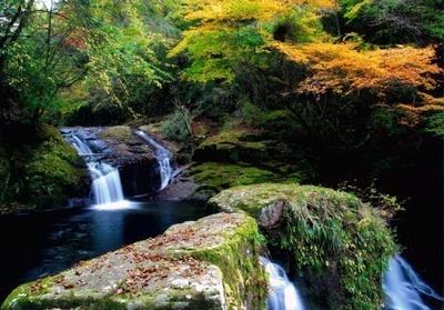 日本の滝百選・赤目四十八滝の紅葉