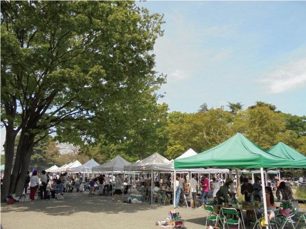 炭火グリルや網など必要な機材がレンタルできる、国営昭和記念公園のバーベキューガーデン。食材の販売も行っている