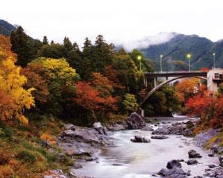 都心から色鮮やかな別世界へトリップ!東京・多摩エリアの紅葉名所4選