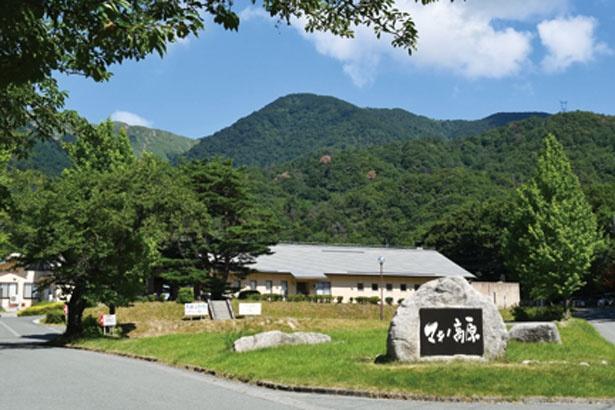 キャンプ場があるマキノ高原内の施設/マキノ高原温泉さらさ