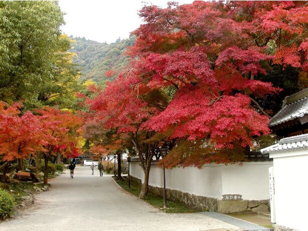 """【写真を見る】紅葉谷公園は""""西の鎌倉""""とも呼ばれる"""