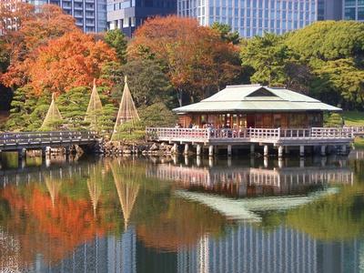 浜離宮恩賜庭園の食事処「中島の御茶屋」で抹茶とお茶請けを食べながら、紅葉をゆったりと鑑賞しよう