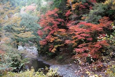 紅葉と一緒に温泉も堪能できる魚梁瀬西川渓谷