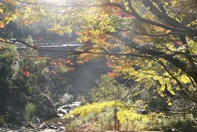 四季折々の景観を楽しめる柏原渓谷