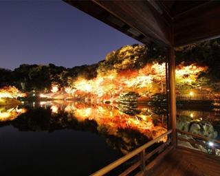写真に撮りたい!四国のおすすめ紅葉スポット10選