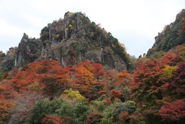 【写真を見る】九州の紅葉スポットとして筆頭にあがる「耶馬溪」の一部である深耶馬溪