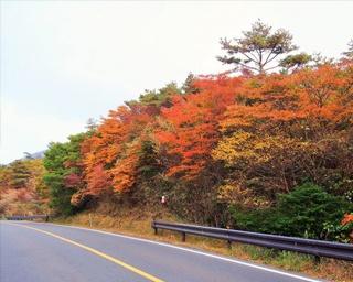 写真に撮りたい!九州のおすすめ紅葉スポット10選