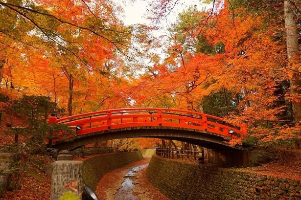 「Kitano Tenmangu shrine」の画像検索結果