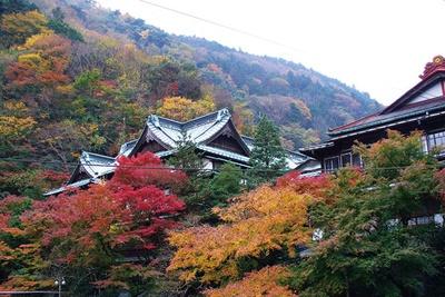 約400年の歴史を誇る、箱根湯本の老舗旅館「環翠楼」と紅葉の共演は必見