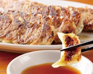 【写真特集】おいしい餃子が食べたい!福岡の餃子コレクション40選