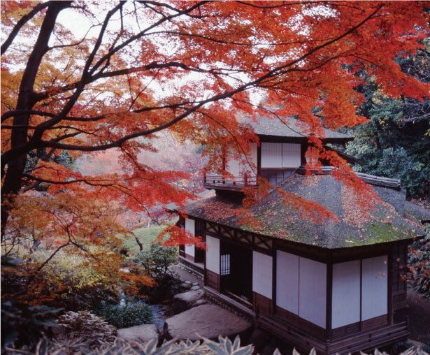 三溪園にある聴秋閣は、徳川家光や春日局にゆかりがある建物。モミジと歴史ある建物の調和は趣深い雰囲気