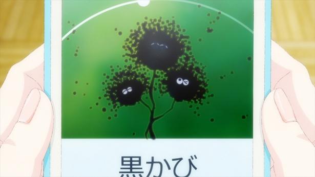 「あそびあそばせ」第8話の先行カットが到着。菌を集めるゲームであそぶ!?