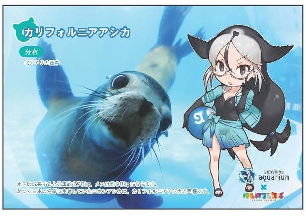 パークガイド・ミライさんによる音声ガイドも!「けもフレ」×サンシャイン水族館コラボ第2弾開催!