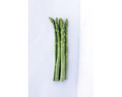 例年9月ごろまで出荷されている長野県の主要農作物「アスパラガス」(150円~)