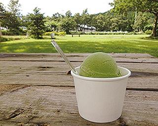 由布院ミルヒ ドーナツ&カフェ / 「濃厚ミルクソフトクリーム」「焦がしキャラメルソフトクリーム」(各300円) 。 コクのあるミルクソフトに香ばしいメイプルコーンがマッチ