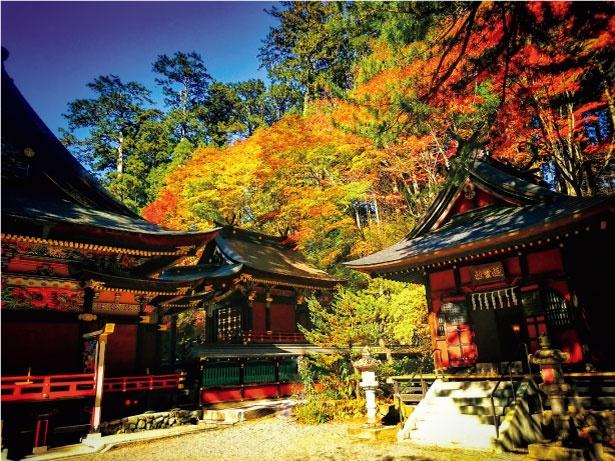 自然に囲まれた三峯神社は、四季折々違った姿を見ることができる