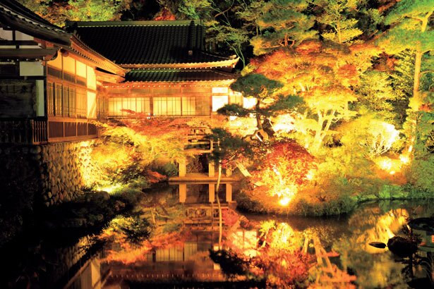 【写真を見る】寳登山神社では11月中旬~下旬にライトアップが行われる。神秘的な雰囲気にうっとり