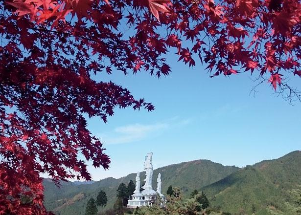 【写真を見る】白雲山 鳥居観音の救世大観音と紅葉を同時に望める。なぐり紅葉まつりの際にはライトアップを実施