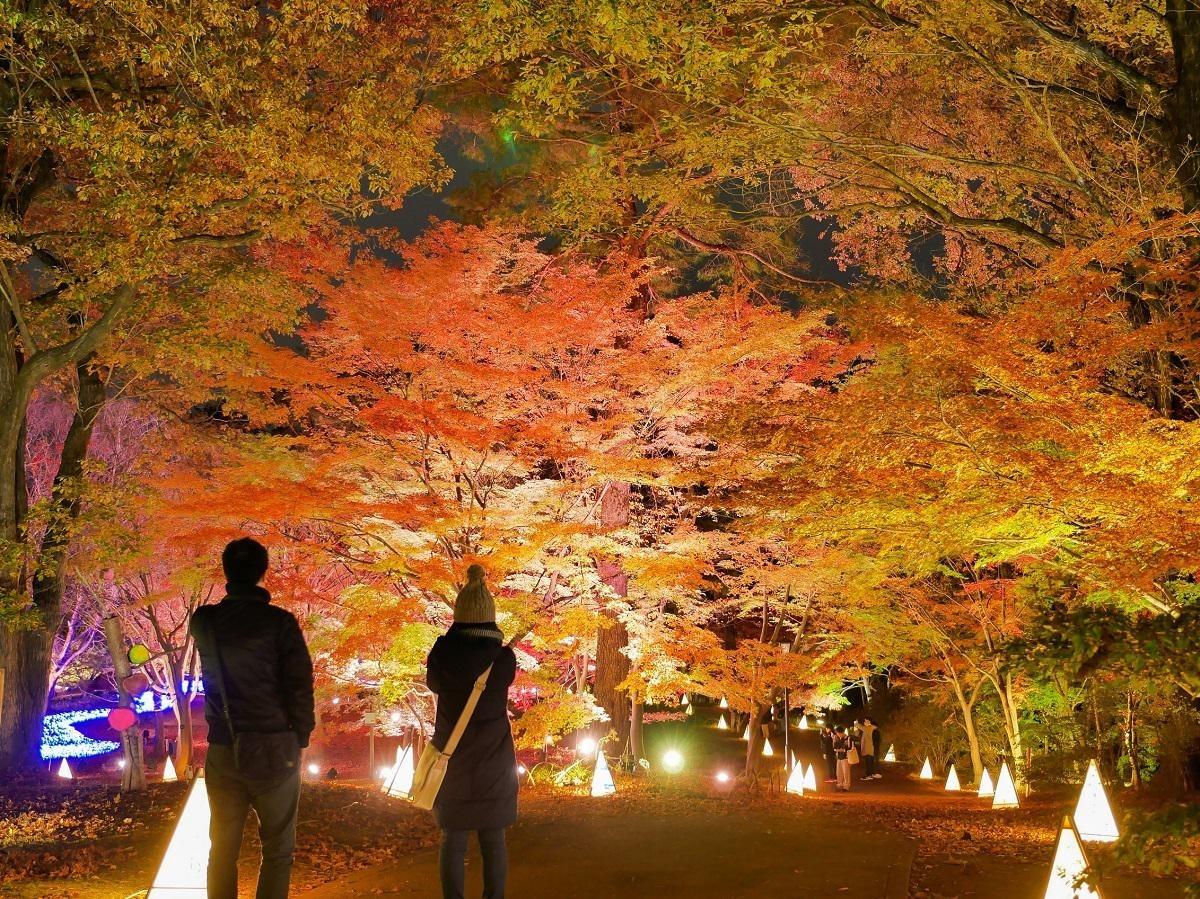 埼玉県の絶景紅葉スポット6選!定番から穴場までさまざまなスポットを紹介