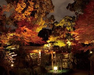 秋まつり&絶景が楽しめる名古屋市内の紅葉名所4選