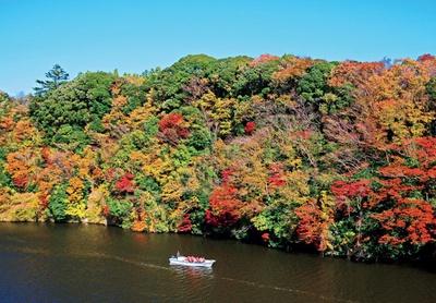 亀山湖では「亀山オータムフェスティバル2018」を開催する。特に紅葉狩りクルーズが人気