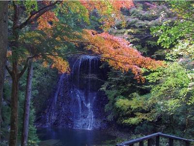 四方木不動滝は流れる水量が多い時は2つに分かれ、右が雄滝、左が雌滝と呼ばれている