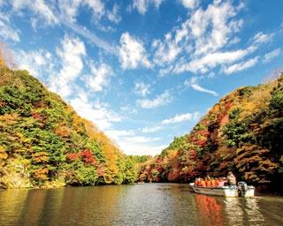 紅葉狩りクルーズも!千葉県の大自然に癒される紅葉名所8選