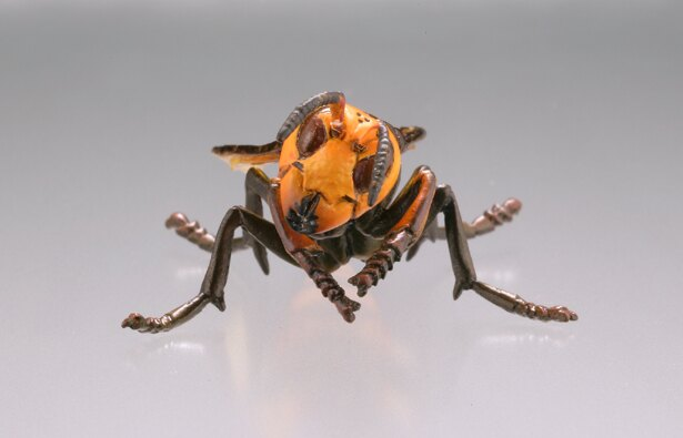海洋堂から発売されている「衛生害虫博覧会~身近に潜む生活害虫~」よりオオスズメバチ