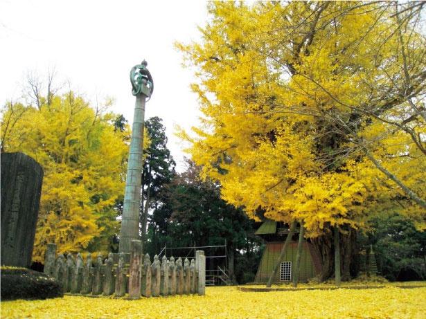 西蓮寺にある2本の大銀杏の隣には、国指定重要文化財に認定された「相輪塔」がそびえ立つ