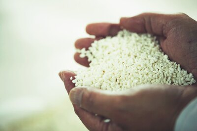 蒸し米に麹をかけ、培養したもの