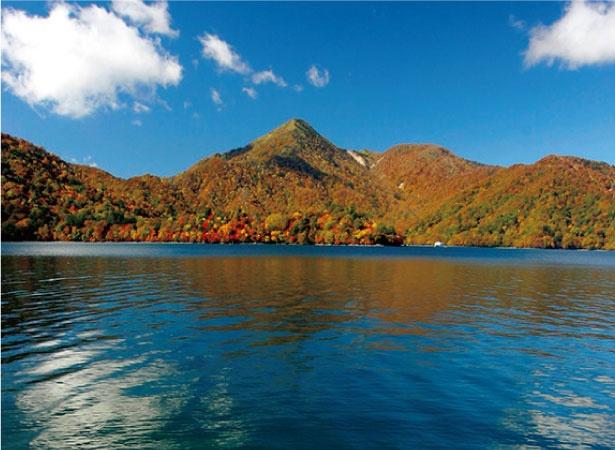 中禅寺湖には遊覧船も周遊しており、湖上から紅葉を鑑賞できる