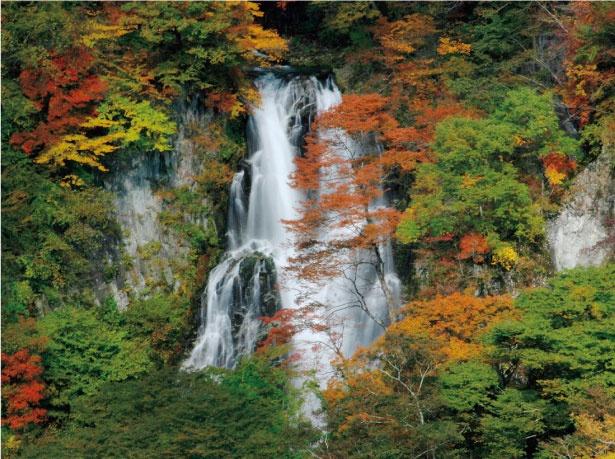 霧降ノ滝は、滝が岩壁に当たった時の水しぶきが、霧のようなことが名前の由来