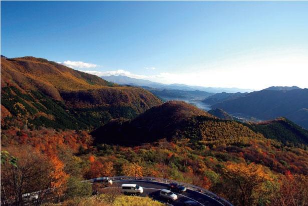 いろは坂は標高差もあるので、紅葉前線がだんだんと下りていく眺めが見事