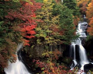 日光・竜頭ノ滝で紅葉狩り!ビューポイントや周辺スポットを紹介