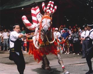 熊本に本格的な秋の訪れを告げる「藤崎八旛宮例大祭」が開催