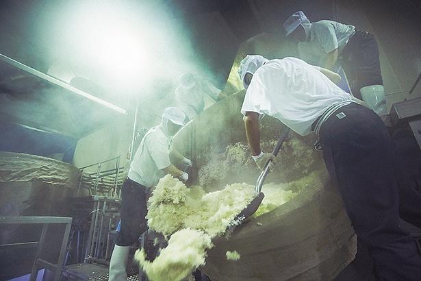 【写真を見る】一ノ蔵で年間使う米は2万6000俵。米は大型の蒸し器を使って蒸し、手作業でコンベアに運ばれる