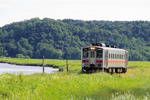 別寒辺牛(べかんべうし)湿原付近を走る花咲線の列車(厚岸~糸魚沢間)
